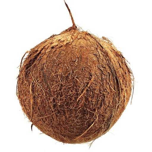 In Husk Waternut Coconuts