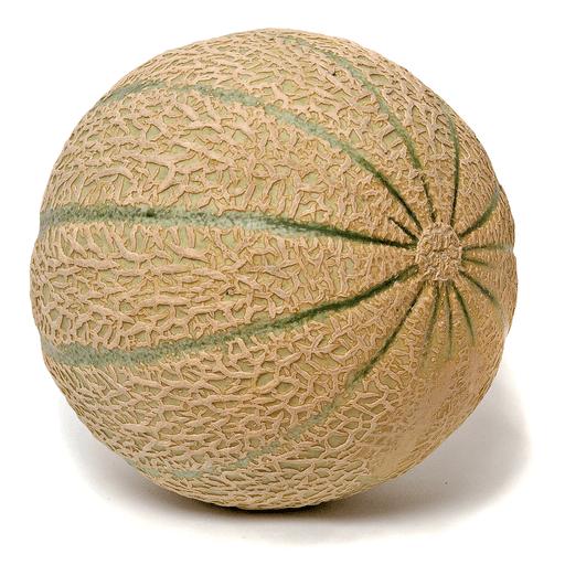 Melon - Muskmelon