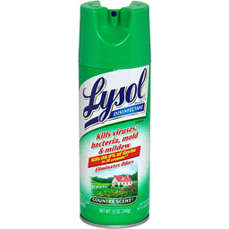 Lysol Disinfectant Spray Country Scent | Teals - Albany