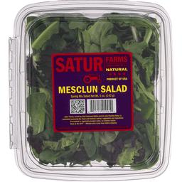 1c13916e0ba Satur Farms Mesclun Salad