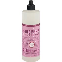 Dish Detergent | Brooklyn Harvest - Halletts Point
