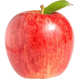 Apples | Harrison