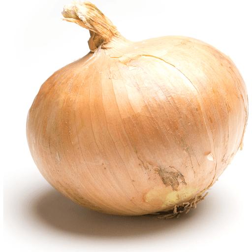 Round Onion, Cello (3 lbs) | Onions & Garlic